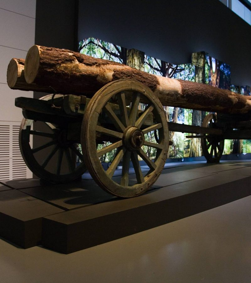 museu-de-portimão (1)