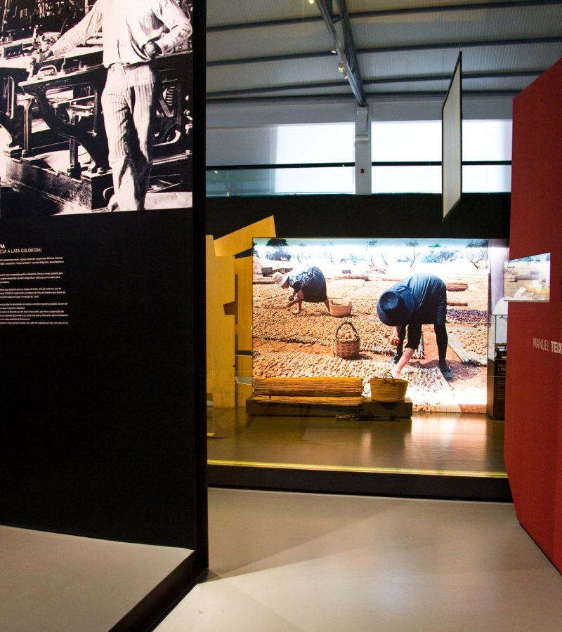 museu-de-portimão (4)